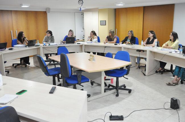 Comissão Especial apresentou relatório ao Conselho Pleno do CFESS (foto: Diogo Adjuto)