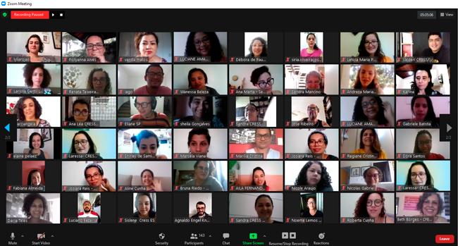 Imagem da reunião virtual mostra as janelas com participantes da plenária com as câmeras ligadas.
