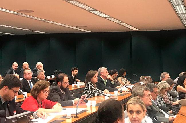 Imagem da audiência pública, com a conselheira do CFESS Daniela Möller ao centro.